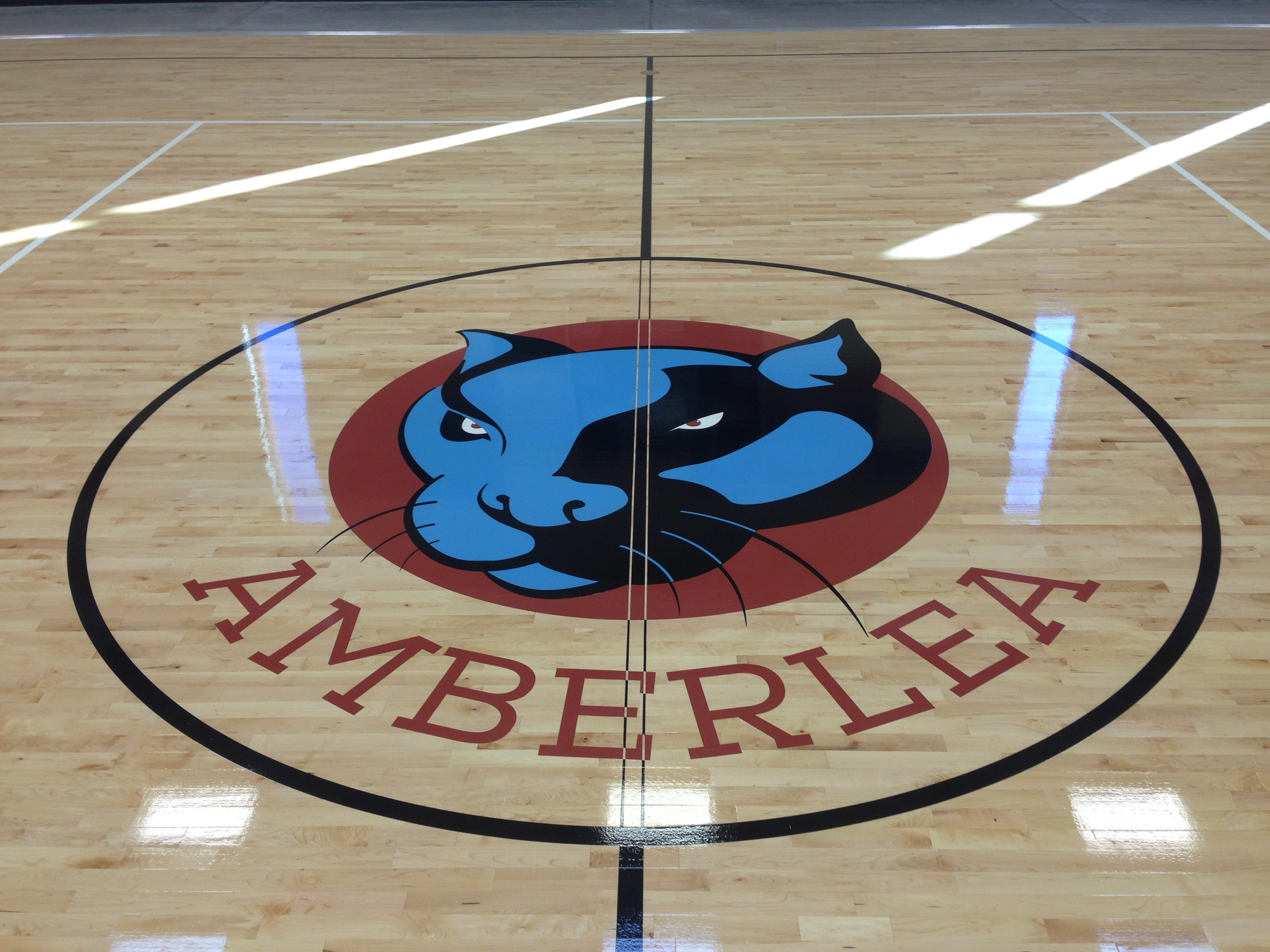 Gym Floor Graphics