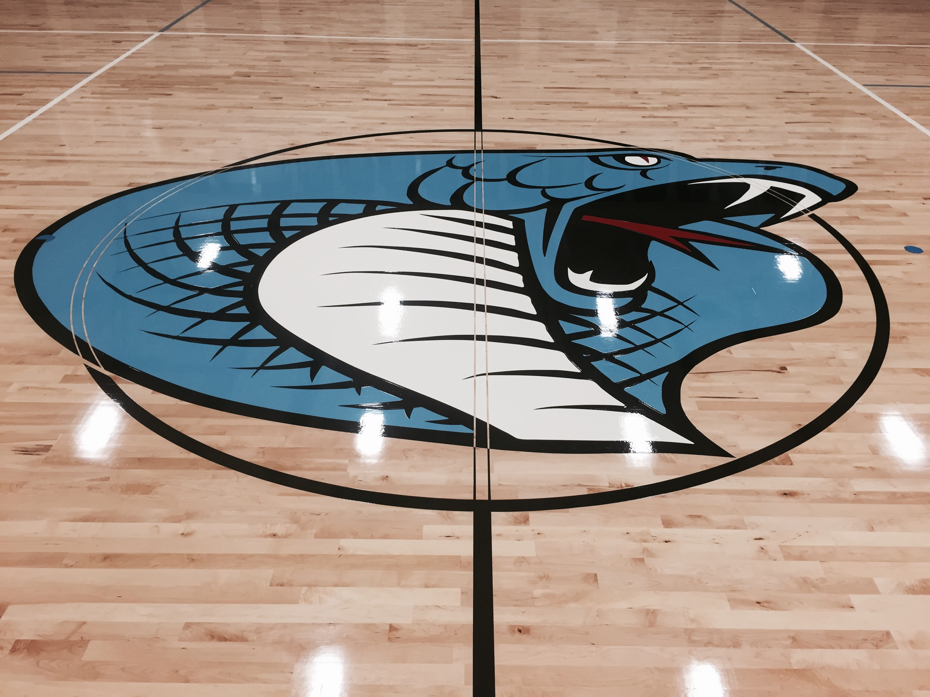 2 :: Gym Floor Graphics
